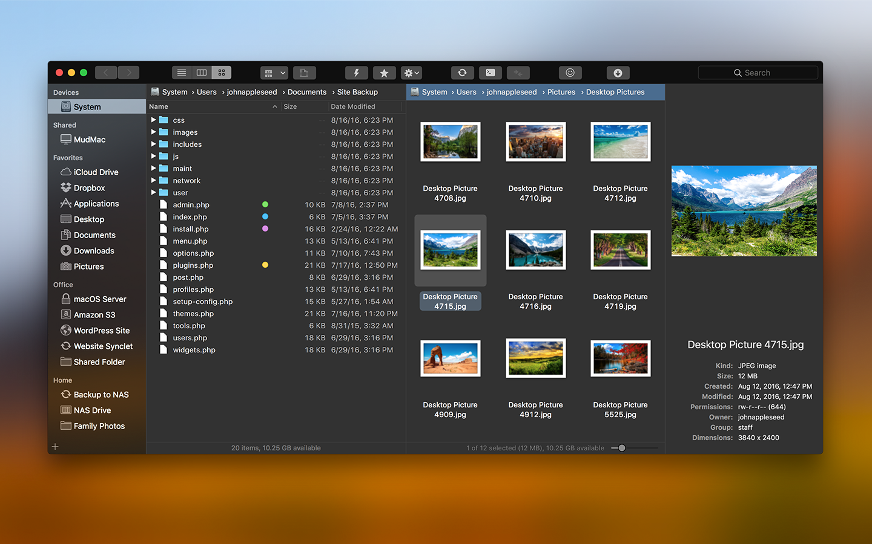 Dark mode theme of dual pane file manager.
